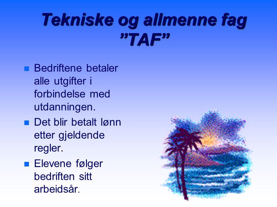 Tekniske og allmenne fag TAF n n Bedriftene betaler alle utgifter i forbindelse med utdanningen.