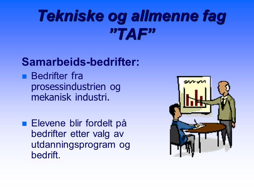 """Tekniske og allmenne fag """"TAF"""" Samarbeids-bedrifter:   Bedrifter fra prosessindustrien og mekanisk industri. n n Elevene blir fordelt på bedrifter e"""