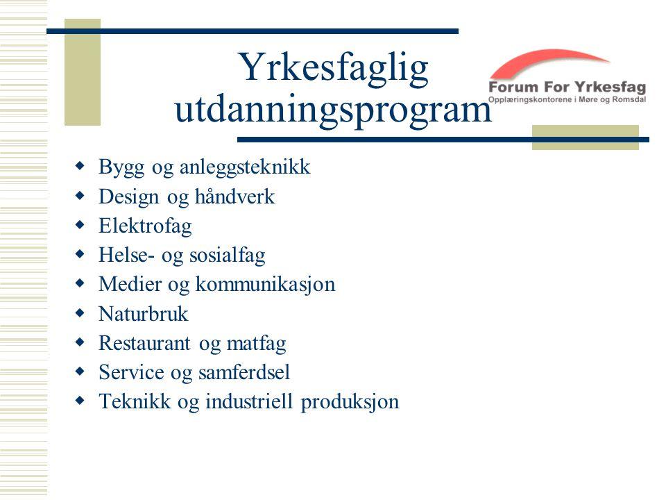 Yrkesfaglig utdanningsprogram  Bygg og anleggsteknikk  Design og håndverk  Elektrofag  Helse- og sosialfag  Medier og kommunikasjon  Naturbruk 