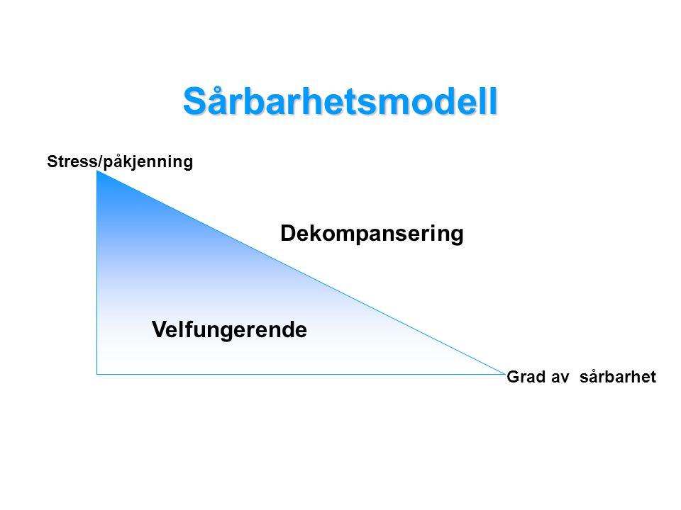 Velfungerende Dekompansering Sårbarhetsmodell Stress/påkjenning Grad av sårbarhet