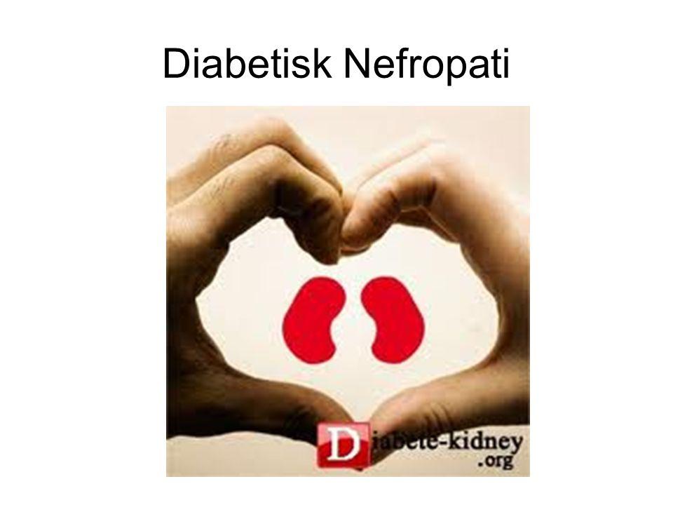 Diabetisk Nefropati