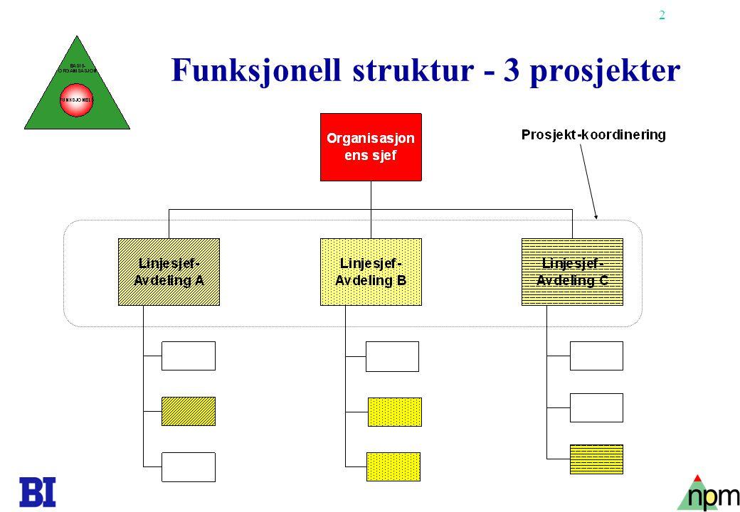 3 Matriseorganisasjon - 2 prosjekter Prosjekt- koordinering