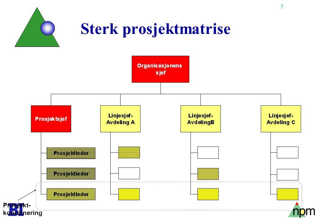16 Det er uenighet i lærebøkene om forholdet styringsgruppe og prosjekteier.