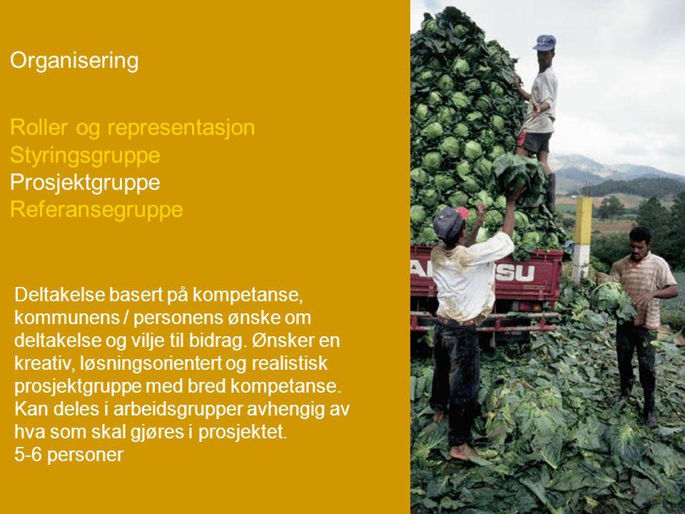 Organisering Deltakelse basert på kompetanse, kommunens / personens ønske om deltakelse og vilje til bidrag.