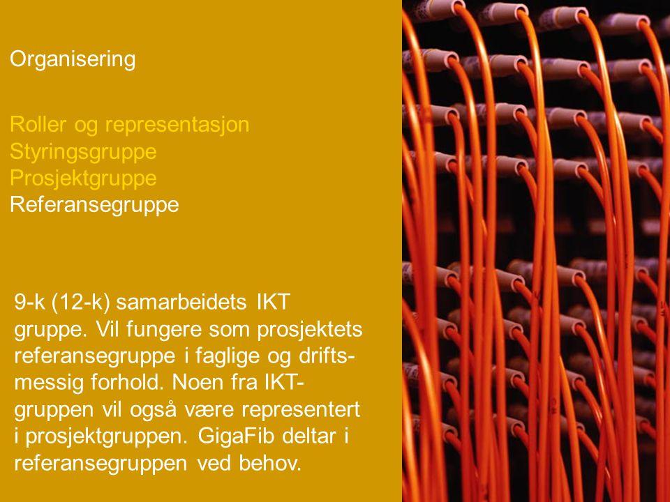Organisering 9-k (12-k) samarbeidets IKT gruppe.