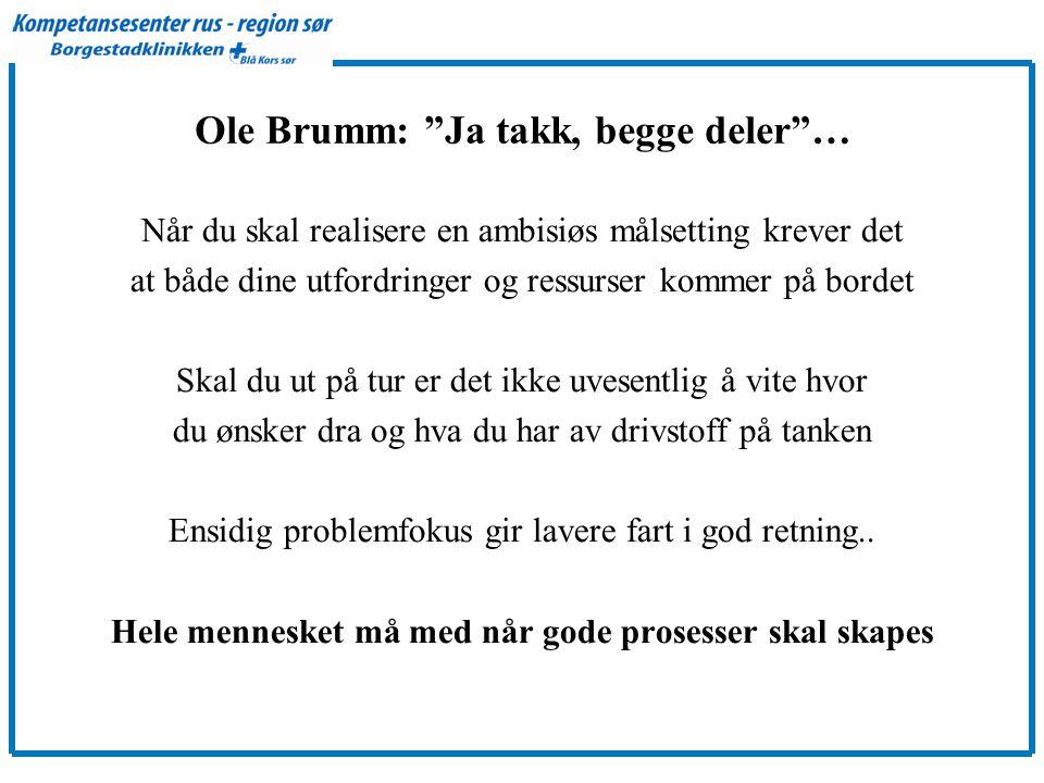 Ole Brumm: Ja takk, begge deler … Når du skal realisere en ambisiøs målsetting krever det at både dine utfordringer og ressurser kommer på bordet Skal du ut på tur er det ikke uvesentlig å vite hvor du ønsker dra og hva du har av drivstoff på tanken Ensidig problemfokus gir lavere fart i god retning..