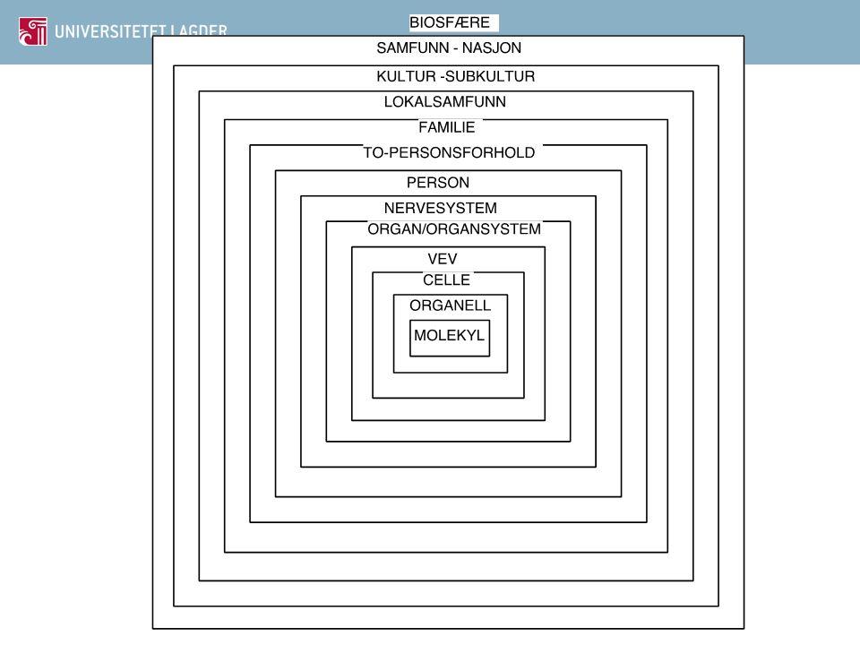 Seksualterapi • Seksualterapi fokuserer på det seksuelle problemet som et symptom i seg selv • Seksualterapi inkluderer alle metoder som kan være til nytte for klienten: • Psykologiske • Farmakologiske • Pedagogiske • Kirurgiske • Andre teknikker elsa.almas@uia.no68