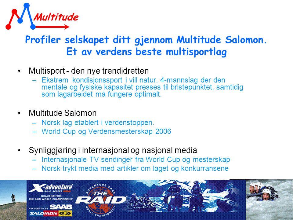 Profiler selskapet ditt gjennom Multitude Salomon.