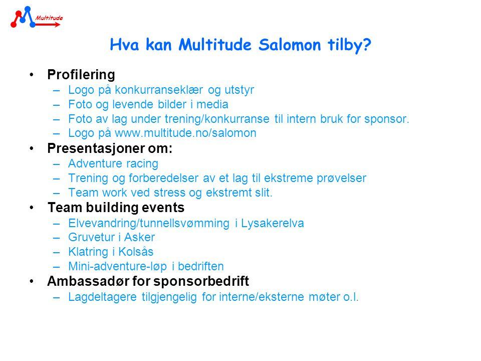 Hva kan Multitude Salomon tilby.