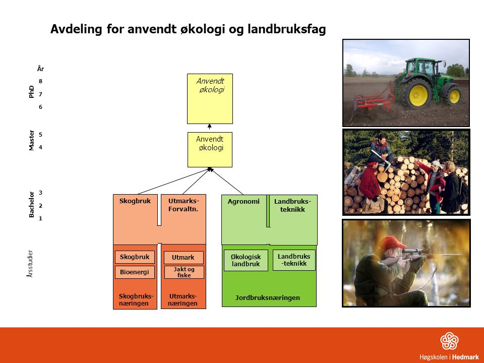 Skogbruk Utmarks- Forvaltn. Skogbruk Årsstudier År 8 7 6 5 4 3 2 1 Anvendt økologi Anvendt økologi Bioenergi Utmark Jordbruksnæringen Økologisk landbr