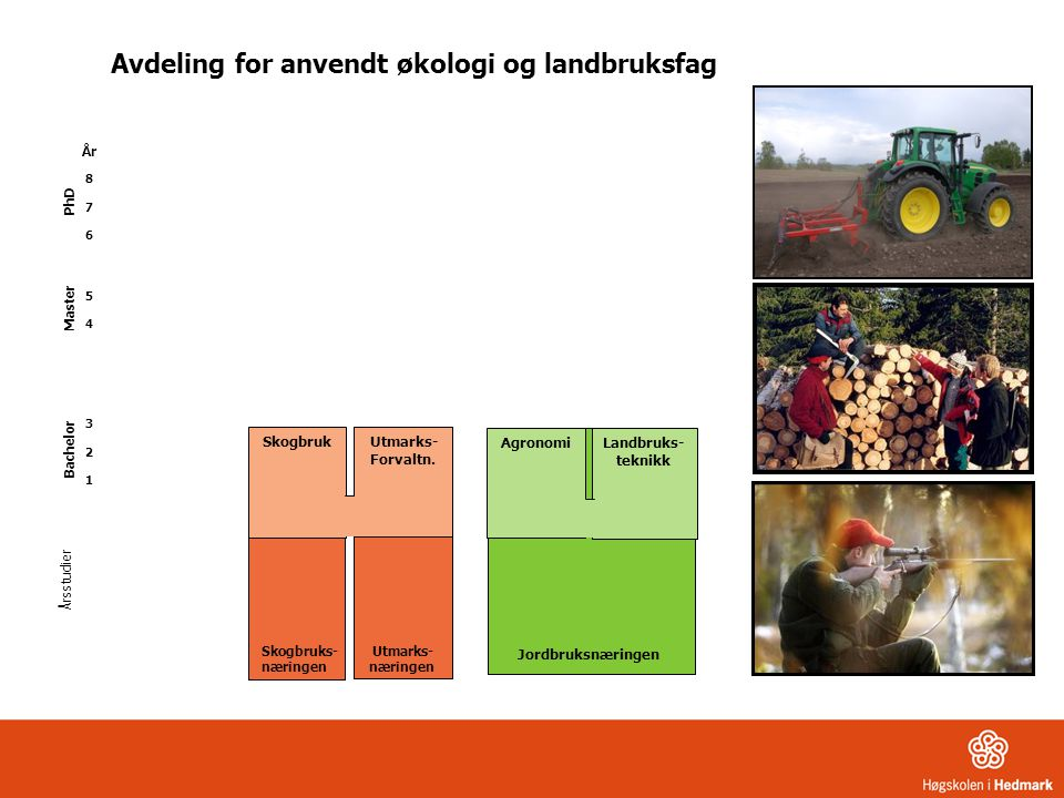 Skogbruk Utmarks- Forvaltn. Årsstudier År 8 7 6 5 4 3 2 1 Jordbruksnæringen Landbruks- teknikk Agronomi Avdeling for anvendt økologi og landbruksfag S