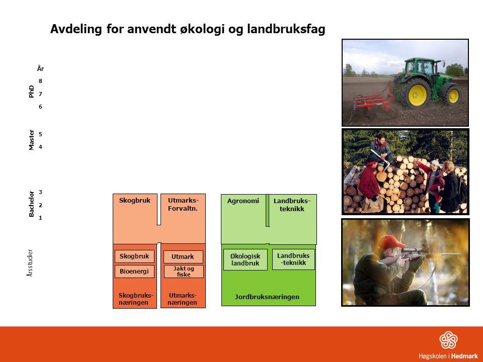 Skogbruk Utmarks- Forvaltn. Skogbruk Årsstudier År 8 7 6 5 4 3 2 1 Bioenergi Utmark Jordbruksnæringen Økologisk landbruk Landbruks- teknikk Agronomi A