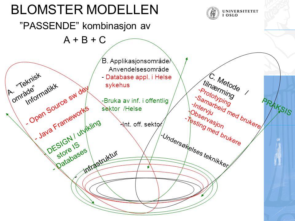 BLOMSTER MODELLEN PASSENDE kombinasjon av A + B + C A. Teknisk område Informatikk - Open Source sw dev - Java Frameworks - DESIGN / utvikling store IS - Databases -infrastruktur B.