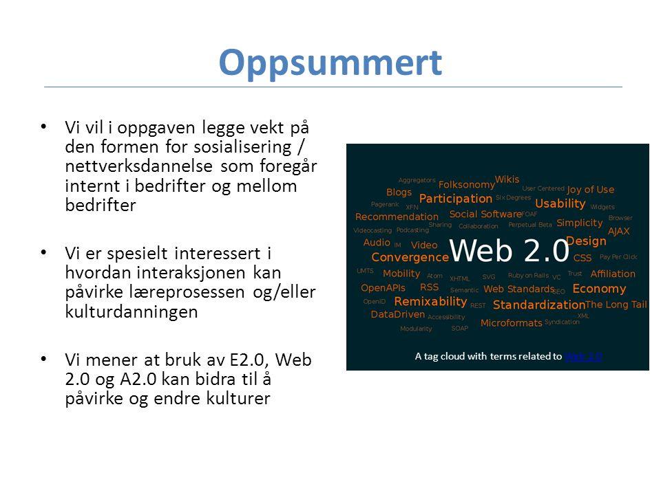 Oppsummert • Vi vil i oppgaven legge vekt på den formen for sosialisering / nettverksdannelse som foregår internt i bedrifter og mellom bedrifter • Vi er spesielt interessert i hvordan interaksjonen kan påvirke læreprosessen og/eller kulturdanningen • Vi mener at bruk av E2.0, Web 2.0 og A2.0 kan bidra til å påvirke og endre kulturer A tag cloud with terms related to Web 2.0Web 2.0