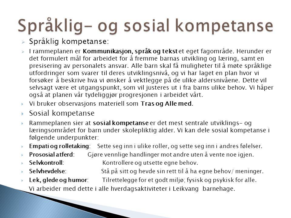  Språklig kompetanse:  I rammeplanen er Kommunikasjon, språk og tekst et eget fagområde. Herunder er det formulert mål for arbeidet for å fremme bar
