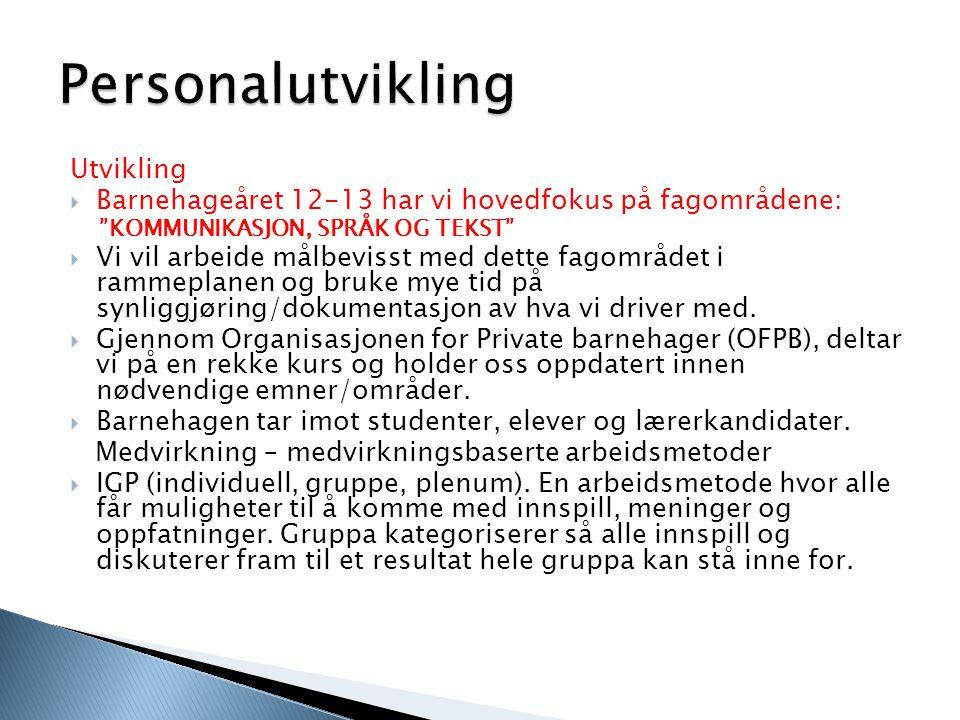  Lov om barnehager ◦ www.lovdata.no, www.pbl.no, www.barnehageforum.no, www.bfd.no (barne- og familiedep) www.lovdata.nowww.pbl.nowww.barnehageforum.no www.bfd.no  Rammeplanen for barnehagen  St.meld.