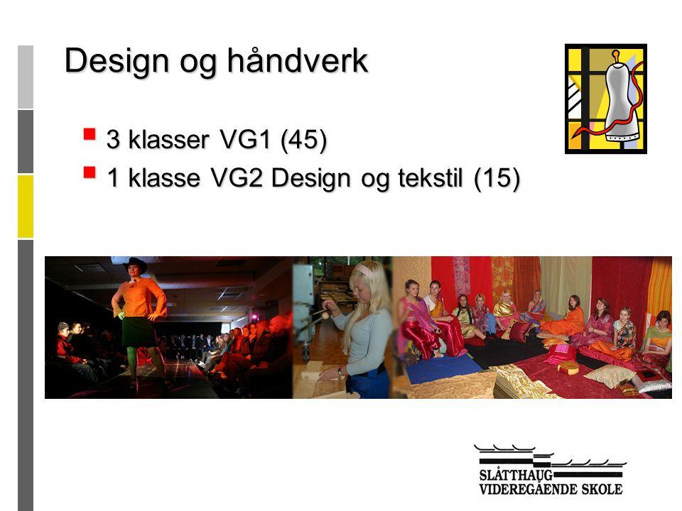  3 klasser VG1 (45)  1 klasse VG2 Design og tekstil (15) Design og håndverk