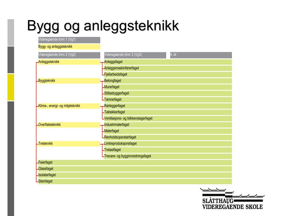  4 klasser VG1 (49)  2 VG2 Helsearbeiderfag (23)  2 VG2 Barne- og ungdomsarbeiderfag (23) Helse og sosialfag