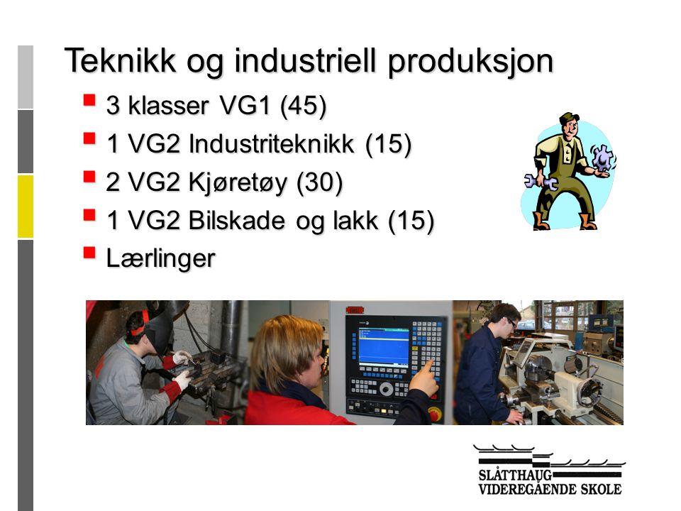  3 klasser VG1 (45)  1 VG2 Industriteknikk (15)  2 VG2 Kjøretøy (30)  1 VG2 Bilskade og lakk (15)  Lærlinger Teknikk og industriell produksjon