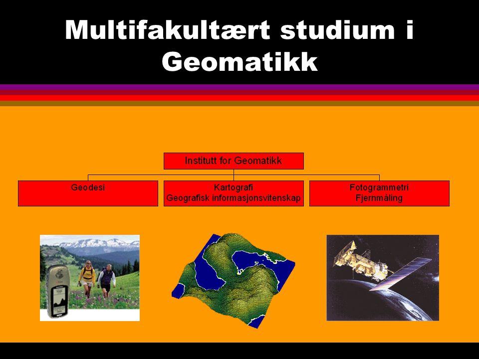 Multifakultært studium i Geomatikk