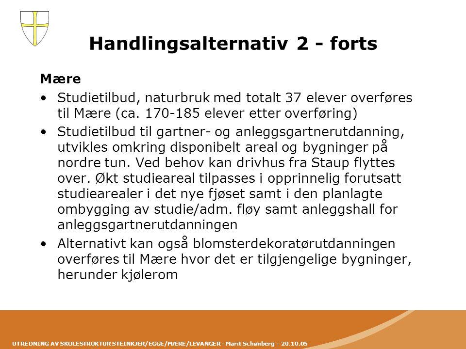 UTREDNING AV SKOLESTRUKTUR STEINKJER/EGGE/MÆRE/LEVANGER - Marit Schønberg – 20.10.05 Handlingsalternativ 2 - forts Mære •Studietilbud, naturbruk med t