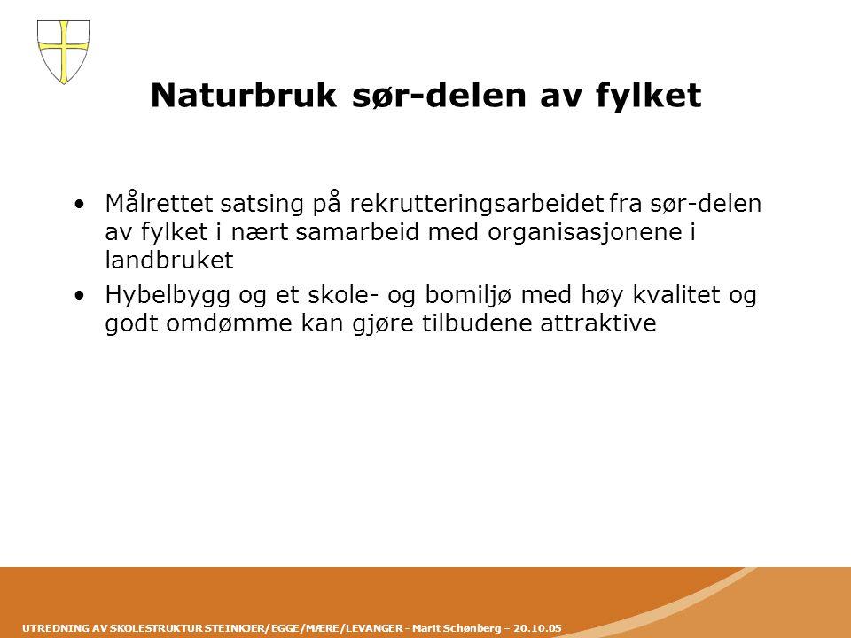 UTREDNING AV SKOLESTRUKTUR STEINKJER/EGGE/MÆRE/LEVANGER - Marit Schønberg – 20.10.05 Naturbruk sør-delen av fylket •Målrettet satsing på rekrutterings