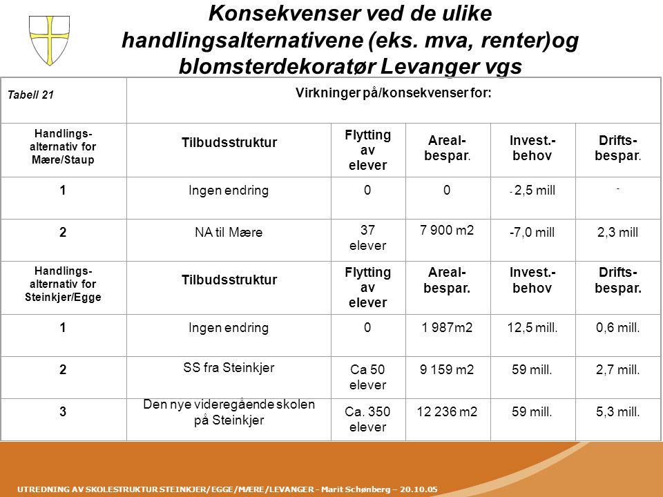 UTREDNING AV SKOLESTRUKTUR STEINKJER/EGGE/MÆRE/LEVANGER - Marit Schønberg – 20.10.05 Konsekvenser ved de ulike handlingsalternativene (eks. mva, rente