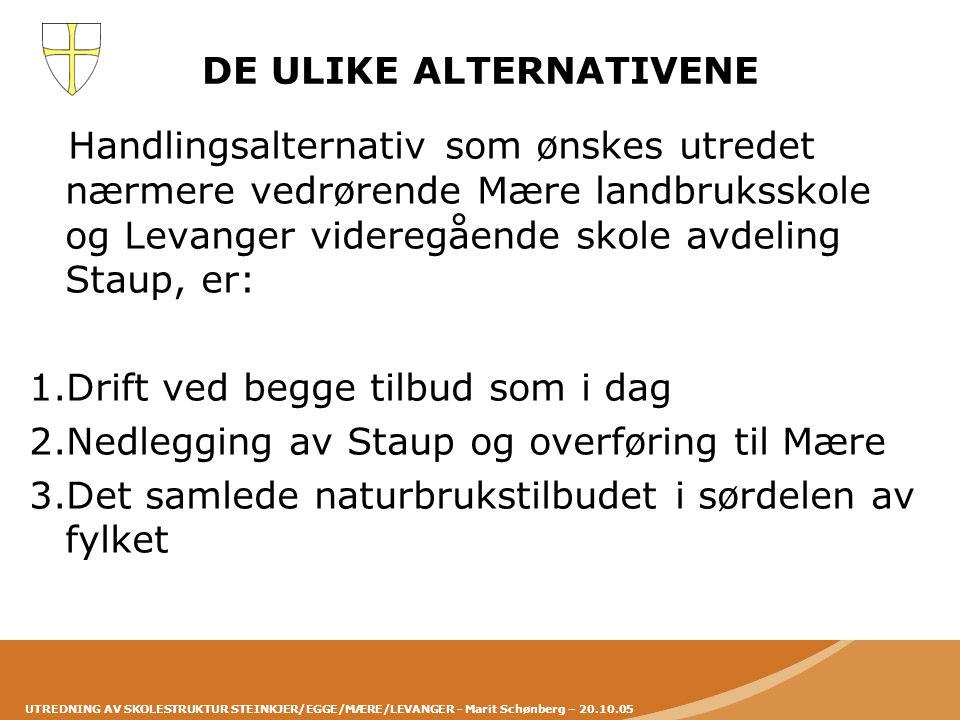 UTREDNING AV SKOLESTRUKTUR STEINKJER/EGGE/MÆRE/LEVANGER - Marit Schønberg – 20.10.05 DE ULIKE ALTERNATIVENE Handlingsalternativ som ønskes utredet nær