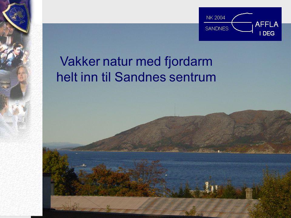Vakker natur med fjordarm helt inn til Sandnes sentrum