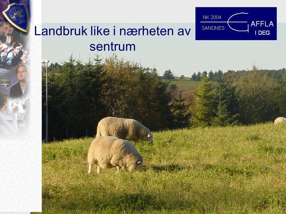 Gaffla i deg Hva vil vi at du skal huske etter en helg i Sandnes ?