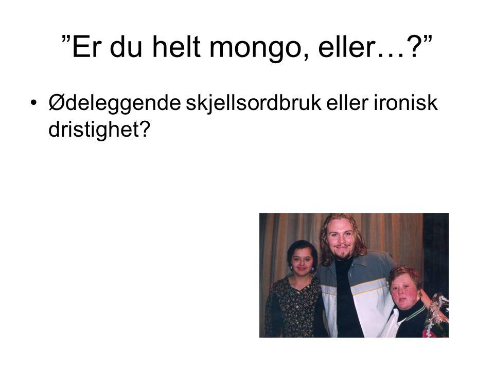 """""""Er du helt mongo, eller…?"""" •Ødeleggende skjellsordbruk eller ironisk dristighet?"""