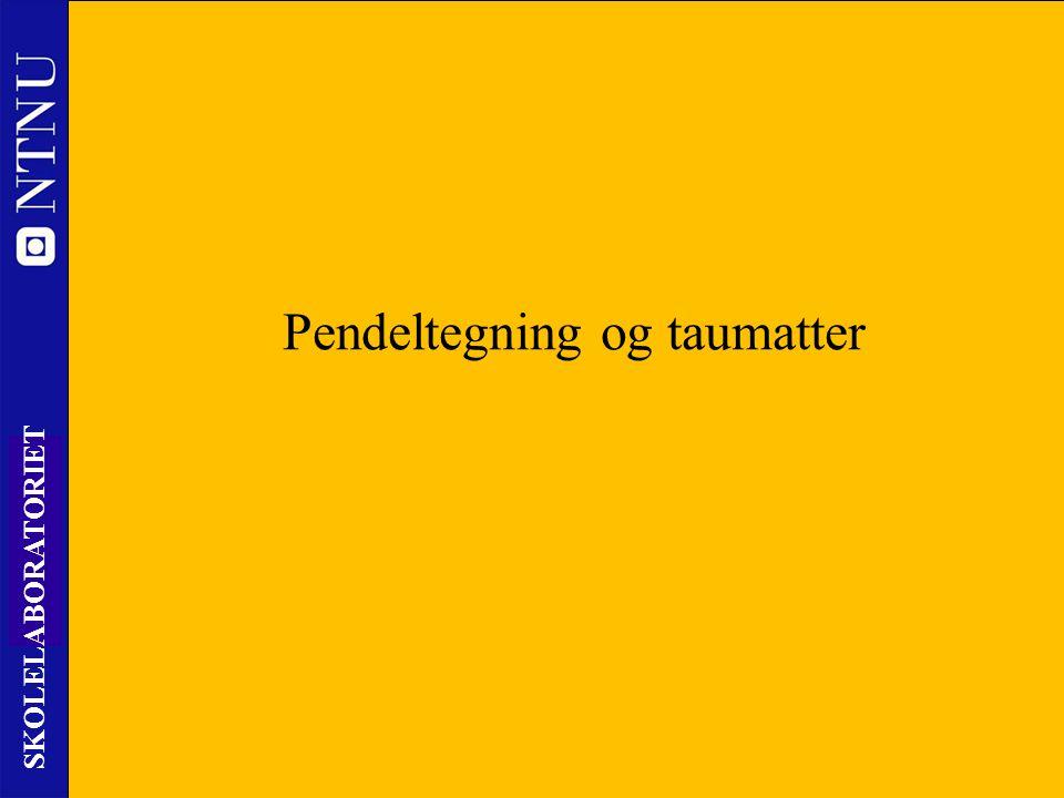 17 SKOLELABORATORIET Nils Kr. Rossing – DKSS 28.02.2014 Pendeltegning og taumatter
