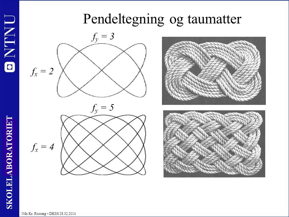 19 SKOLELABORATORIET Nils Kr. Rossing – DKSS 28.02.2014 Pendeltegning og taumatter f x = 4 f y = 5 f y = 3 f x = 2