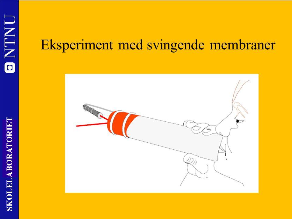 50 SKOLELABORATORIET Nils Kr. Rossing – DKSS 28.02.2014 Eksperiment med svingende membraner