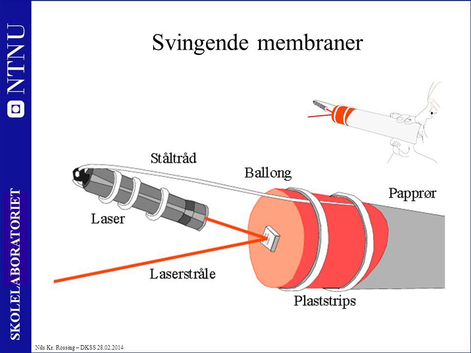 51 SKOLELABORATORIET Nils Kr. Rossing – DKSS 28.02.2014 Svingende membraner