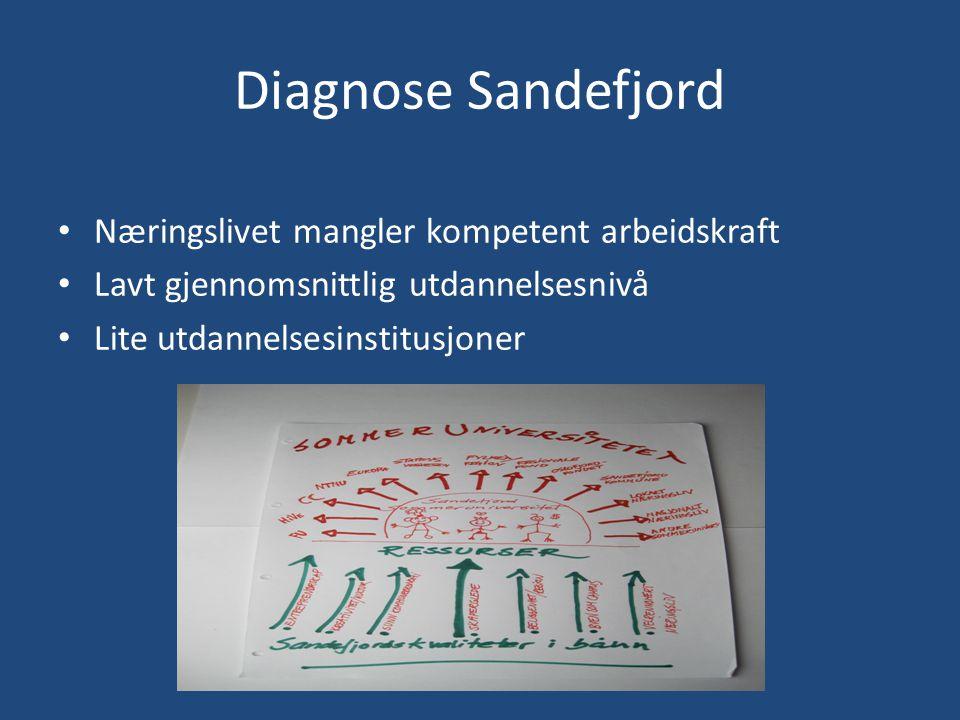 Diagnose Sandefjord • Næringslivet mangler kompetent arbeidskraft • Lavt gjennomsnittlig utdannelsesnivå • Lite utdannelsesinstitusjoner