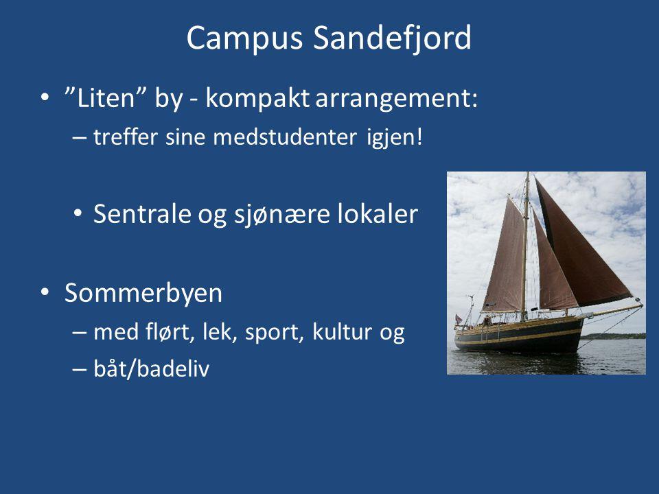 """Campus Sandefjord • """"Liten"""" by - kompakt arrangement: – treffer sine medstudenter igjen! • Sentrale og sjønære lokaler • Sommerbyen – med flørt, lek,"""