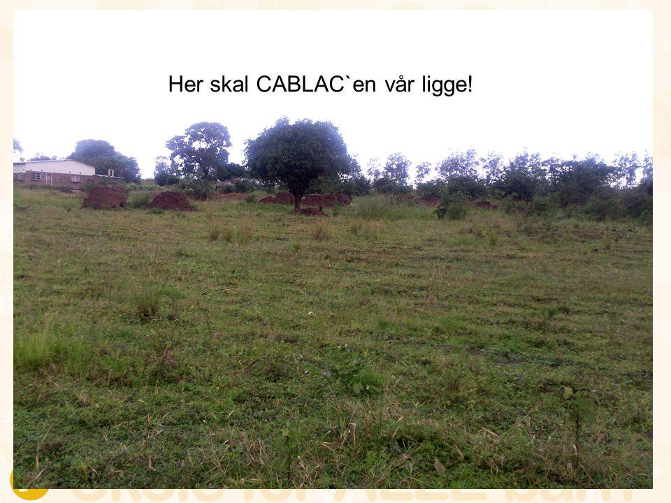 Her skal CABLAC`en vår ligge!