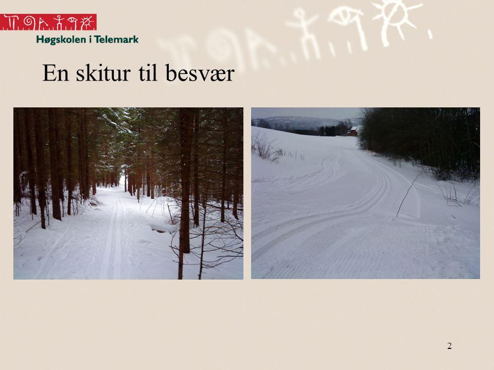 En skitur til besvær 2