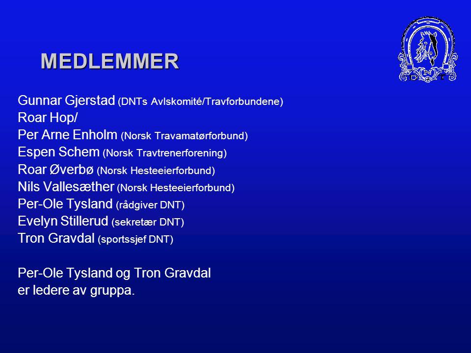 MEDLEMMER Gunnar Gjerstad (DNTs Avlskomité/Travforbundene) Roar Hop/ Per Arne Enholm (Norsk Travamatørforbund) Espen Schem (Norsk Travtrenerforening) Roar Øverbø (Norsk Hesteeierforbund) Nils Vallesæther (Norsk Hesteeierforbund) Per-Ole Tysland (rådgiver DNT) Evelyn Stillerud (sekretær DNT) Tron Gravdal (sportssjef DNT) Per-Ole Tysland og Tron Gravdal er ledere av gruppa.