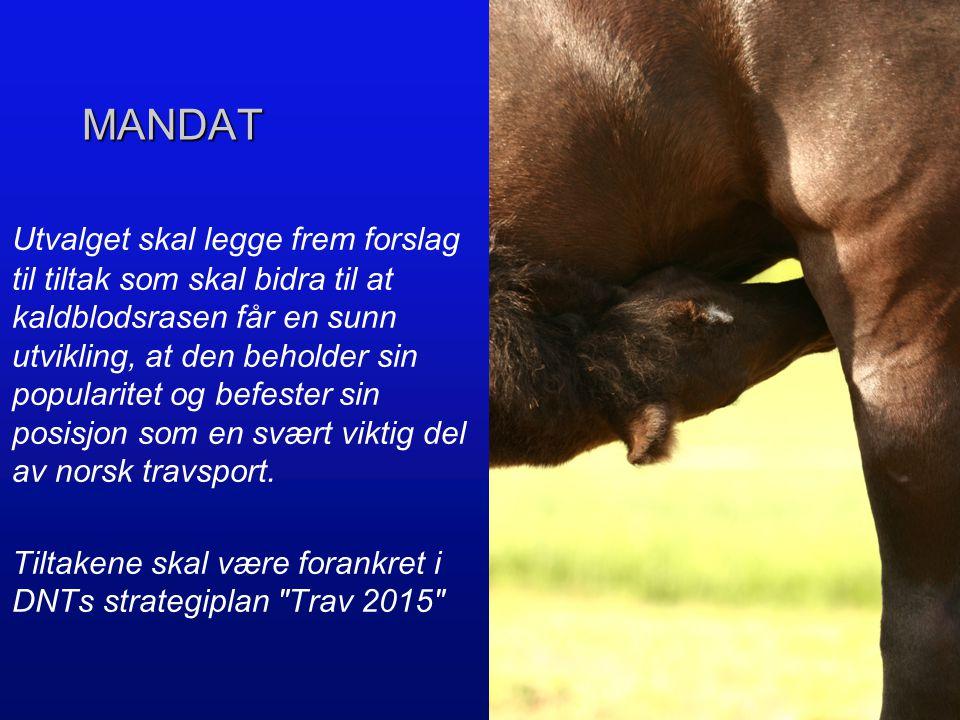 MEDLEMMER Gunnar Gjerstad (DNTs Avlskomité/Travforbundene) Roar Hop/ Per Arne Enholm (Norsk Travamatørforbund) Espen Schem (Norsk Travtrenerforening)