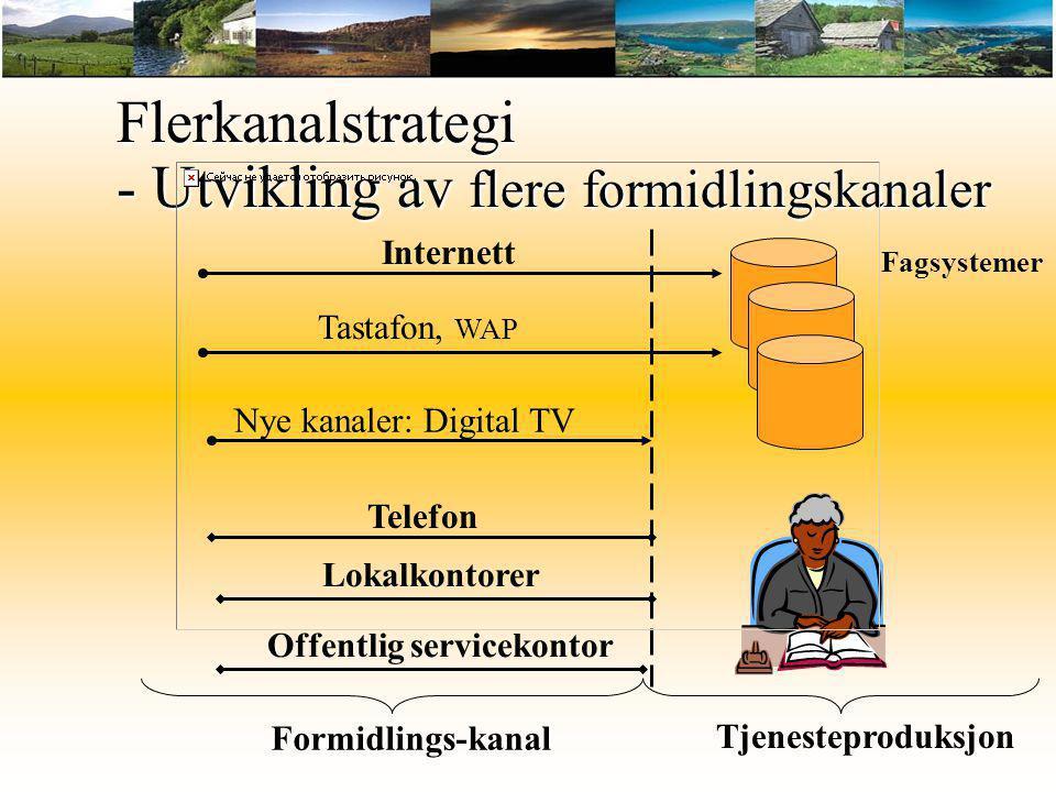Internett Telefon Lokalkontorer Offentlig servicekontor Flerkanalstrategi - Utvikling av flere formidlingskanaler Formidlings-kanal Fagsystemer Tastaf