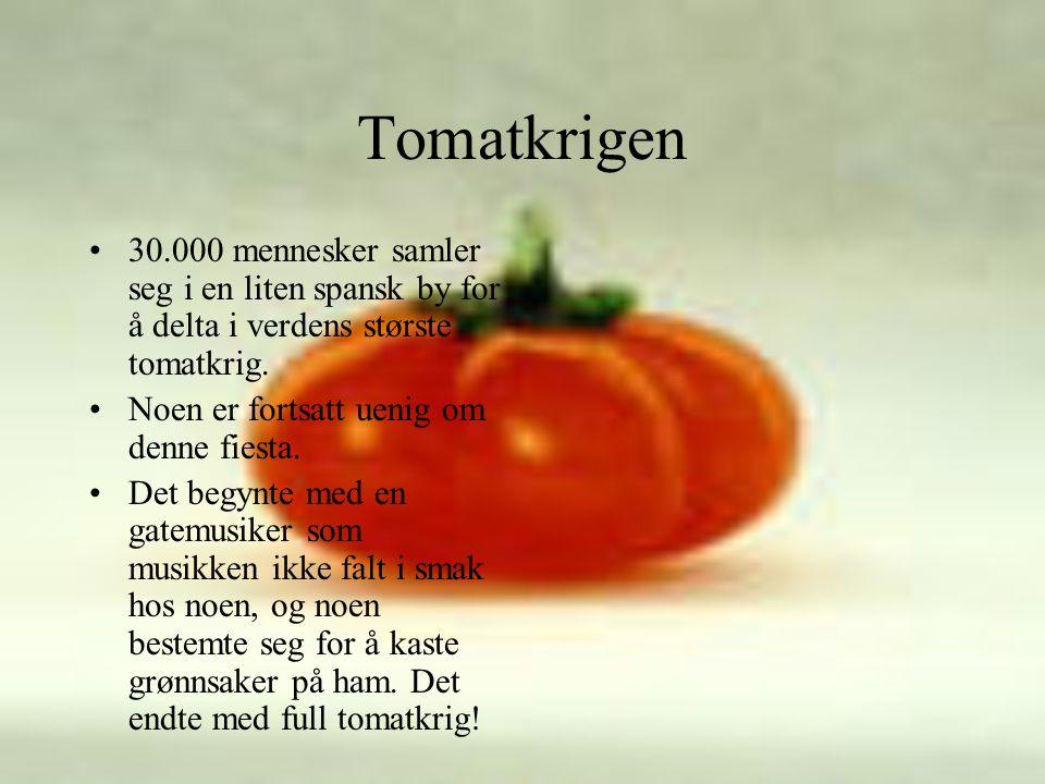 Tomatkrigen •30.000 mennesker samler seg i en liten spansk by for å delta i verdens største tomatkrig.