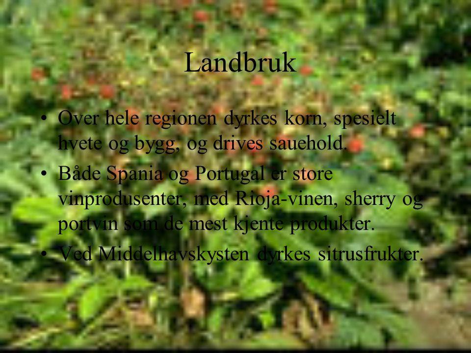 Landbruk •Over hele regionen dyrkes korn, spesielt hvete og bygg, og drives sauehold.