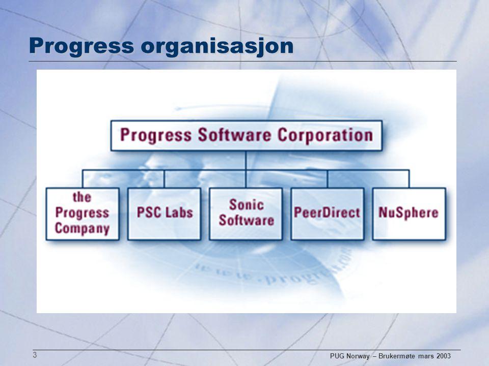 PUG Norway – Brukermøte mars 2003 3 Progress organisasjon