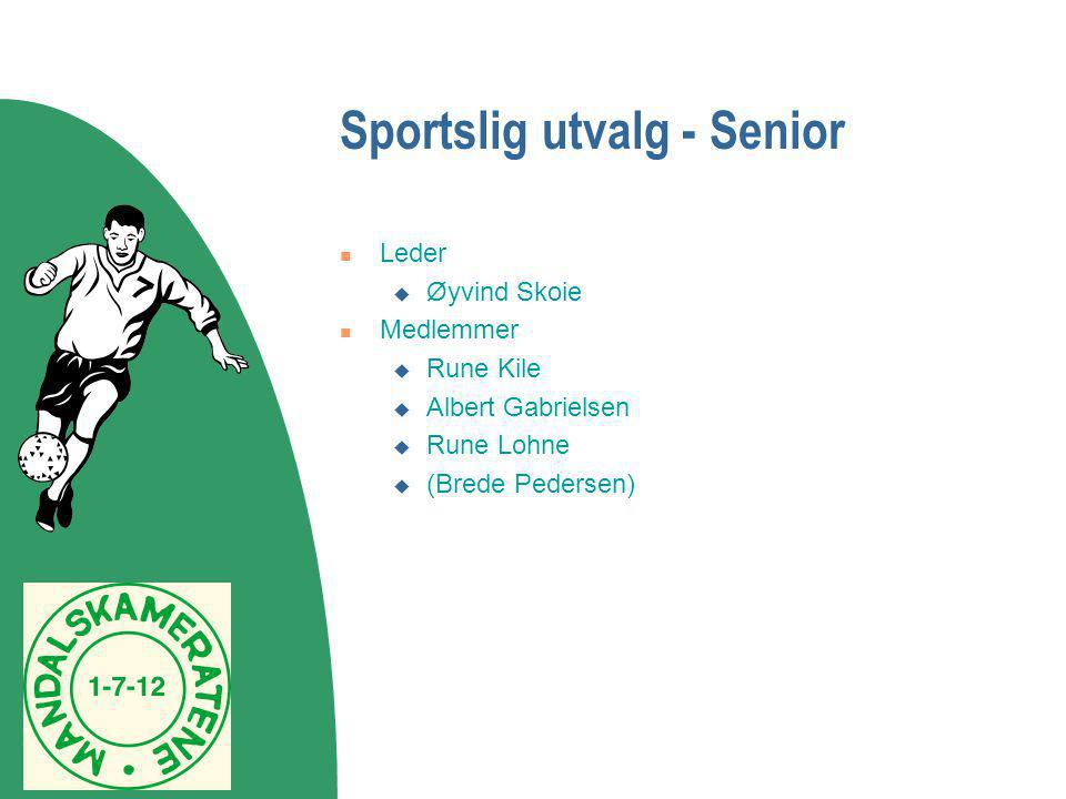 Sportslig utvalg - Senior  Leder  Øyvind Skoie  Medlemmer  Rune Kile  Albert Gabrielsen  Rune Lohne  (Brede Pedersen)