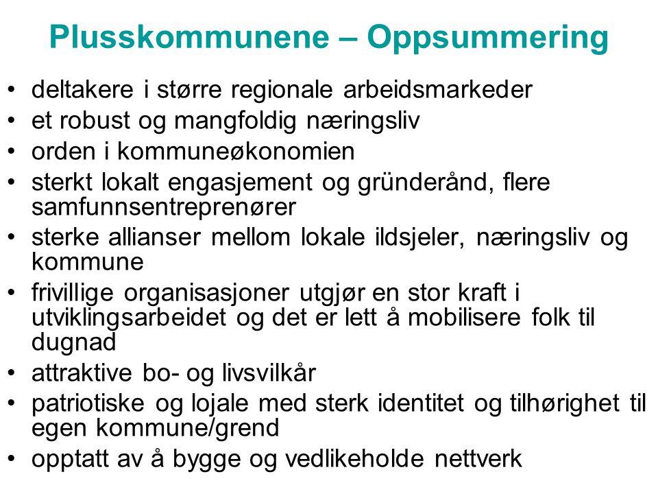 Plusskommunene – Oppsummering •deltakere i større regionale arbeidsmarkeder •et robust og mangfoldig næringsliv •orden i kommuneøkonomien •sterkt loka