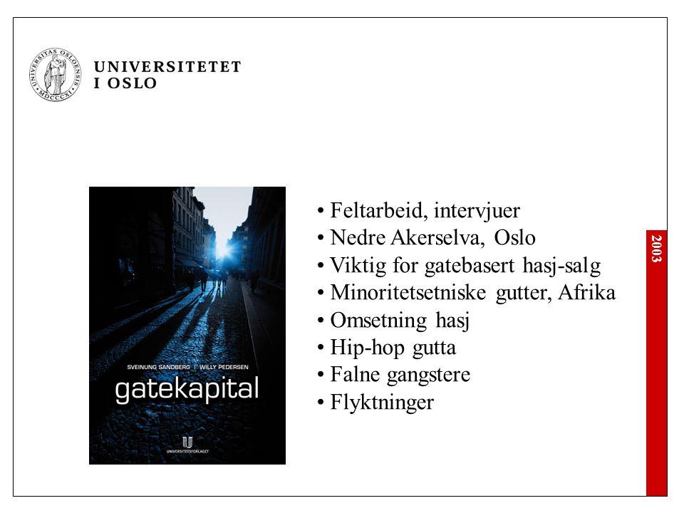 2003 • Feltarbeid, intervjuer • Nedre Akerselva, Oslo • Viktig for gatebasert hasj-salg • Minoritetsetniske gutter, Afrika • Omsetning hasj • Hip-hop