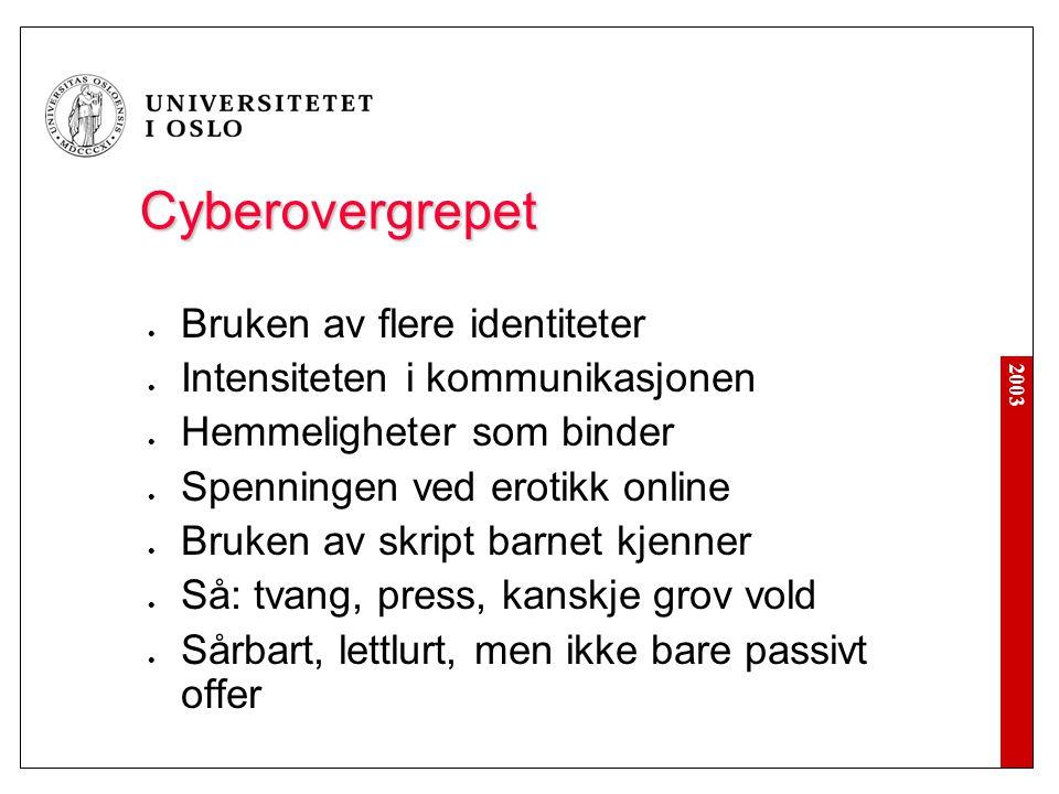 2003 Cyberovergrepet  Bruken av flere identiteter  Intensiteten i kommunikasjonen  Hemmeligheter som binder  Spenningen ved erotikk online  Bruke