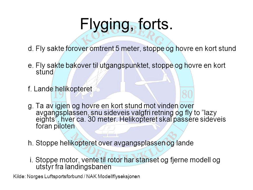 Flyging, forts. d. Fly sakte forover omtrent 5 meter, stoppe og hovre en kort stund e.